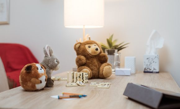home bears